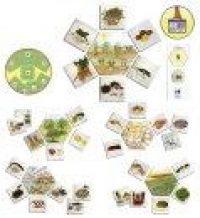Mindennapi élelmiszereink, képkártya sorozat (MDDV20551)