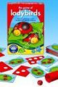 Katicabogaras játék - Matematikai képességfejlesztő eszköz (OR0039)