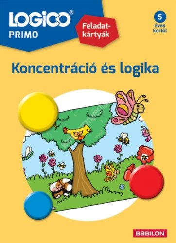 logico-primo-koncentracio-es-logika