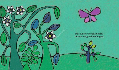lili-tortenet-down-kislanyrol-tolerancia-sorozat-krasznar-es-fiai-fejleszto-konyvek