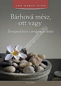 Bárhová mész, ott vagy Éberségmeditáció a mindennapi életben