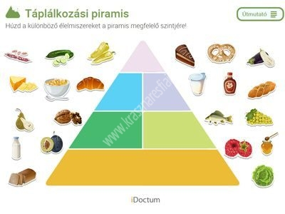 Táplákozási piramis - Biológia CD iDoctum